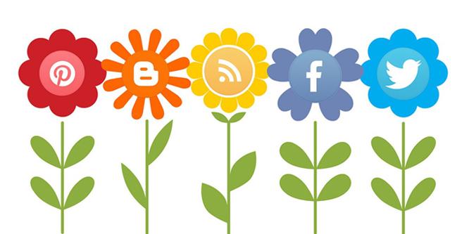 social-media-flowers