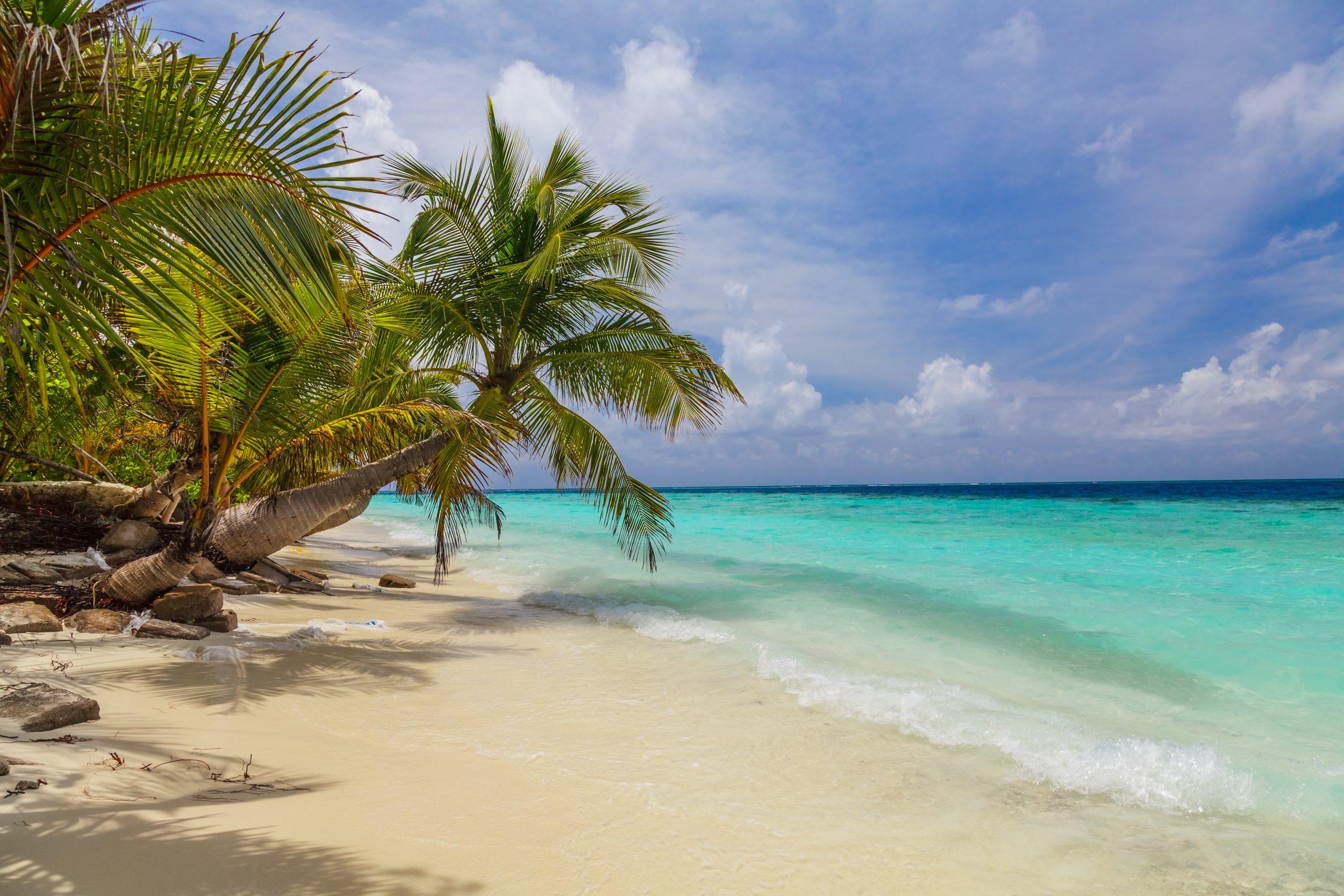 Beach Travel Holiday